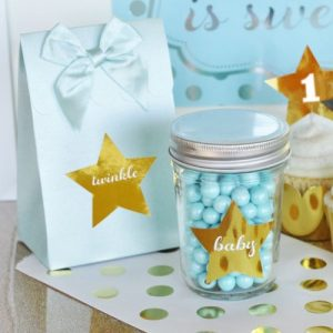 Twinkle Twinkle Baby Shower Theme announcement Decorations 53