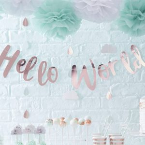 welcome to the world Baby Shower Personalized Theme Decoration Ideas & Gifts17